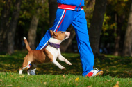 stock-photo-51685080-jogging-with-dog